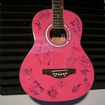 Vans Warped Tour 2014 Signed Guitar